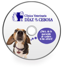 urgencias_diazdelacebosa_24horas